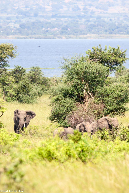 Uganda deel 2