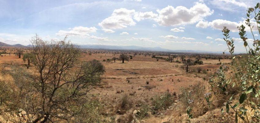 panoramic view, Ruaha National Park, Tanzania
